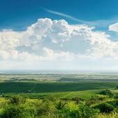 Bulutların üzerinde yeşil bağ — Stok fotoğraf
