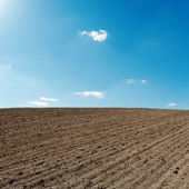 Blue sky and black agriculture field — Stock Photo
