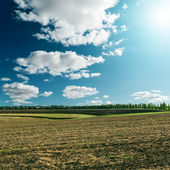Cloudy sky with sun over field — Stock Photo