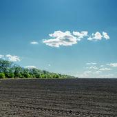 Black field under cloudy blue sky — Stock Photo
