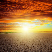 Good red sunset over drought eart — Stock Photo