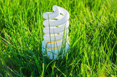 White energy saving bulb in green grass — Foto Stock