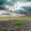 Drought land and dramatic sky — Stock Photo