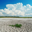 Drought earth with green grass under clouds — Stock Photo #25472355