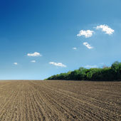 Ploughed field in spring and blue sky — Stock Photo