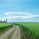在春天字段和大云在天空中的地平线脏路 — 图库照片