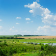Green landscape with river under blue cloudy sky — Stock Photo