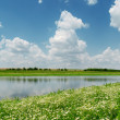 Blue sky with clouds over river and meadow with chamomiles — Stock Photo