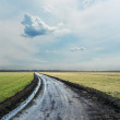 Wet country road under cloudy sky — Stock Photo