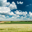 Deep blue sky with clouds and green landscape — Stock Photo