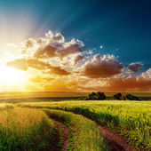 Dramatic sunset over road in fields — Stock Photo