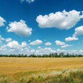 Paysage rural sous le ciel nuageux — Photo