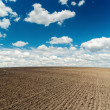Plowed field and deep blue sky with clouds over it — Photo