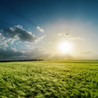Cloudy sunset over green field — Stock Photo