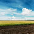 Agriculture fields and deep blue sky — Stock Photo