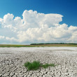 White clouds over cracked desert — Stock Photo