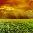 Orange dramatic sky over green field — Stock Photo #36619119