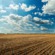 Plowed field and cloudy sky in sunset — Stock Photo