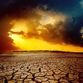 Sunset over cracked desert — Stock Photo