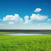 Green lanscape with pond under blue sky — Stock Photo