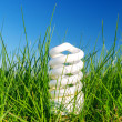 Energy saving bulb in green grass against blue sky — Stock Photo
