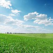 Groen grasveld en wolken boven het — Stockfoto
