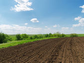 Black plowed field and blue sky with clouds — Stock Photo