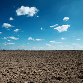 Plowed field and blue sky — Stock Photo