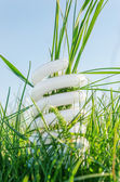 White eco bulb in green grass — Stock Photo