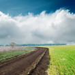 Spring dirty road in green fields and clouds over it — Stock Photo
