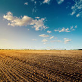 Black field after harvesting and blue cloudy sky — Stock Photo