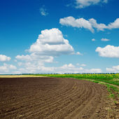 Black plowed field and clouds in blue sky — Stock Photo
