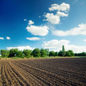 Black agriculture field and blue sky with clouds — Stock Photo