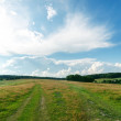 Green landscape and clouds over it — Stock Photo #43102455