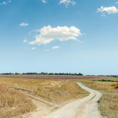 Two rural roads in steppe and cloud in blue sky — Stock Photo