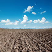 Black plowed field after harvesting under blue sky — Stock Photo
