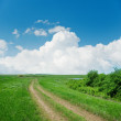 Dirty road in green landscape and clouds over it — Stock Photo #46731625