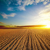 Cloudy sunset and plowed field — Stock Photo