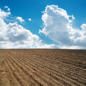 Clouds in blue sky and plowed field — Stock Photo