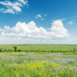 Green landscape with flowers and clouds over it — Stock Photo #48195079