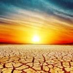 Golden sunset over cracked desert — Stock Photo #48195365
