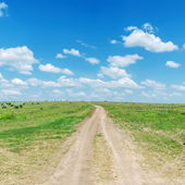 Road on hill in green grass and blue sky — Stock Photo