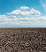Black arable field after harvesting and blue sky — Stock Photo