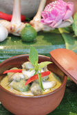 Green curry with chicken and eggplant, (Kaeng Khiao Wan Kai) — Stockfoto