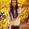 Autumn Brunette Woman Fashion, Outdoors Portrait. — Stock Photo