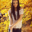 Stock Photo: Autumn Brunette Woman Fashion, Outdoors Portrait.