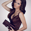Fashion brunette woman in elegant dress with bag. Jewelry and Be — Stock Photo