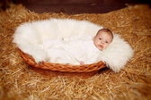 Little baby resting in basket on haystack straw background — Stock Photo