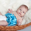 Portrait of Newborn baby lying on fur with blue bow in bed - Stock Photo