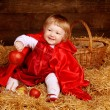 Little girl is sitting on pile of straw with apple. Little Red R — Stock Photo #24606601